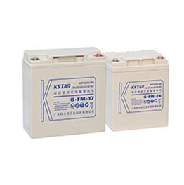 FM小型密封电池系列
